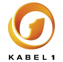 Kabel1 1994