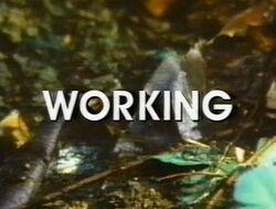 Working nbc