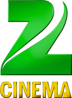 Zee Cinema 2011