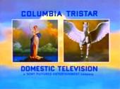 Columbia TriStar Domestic Television Logo 2001 c