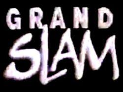 Grand slam 1990