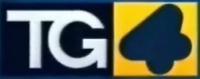 TG4 logo 2