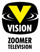 File:VisionTV 2010.png