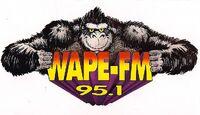 WAPE-FM 95.1