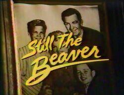 Still-the-beaver