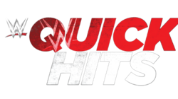 Wwe quick hits logo by wrestling networld-d8c926w
