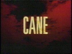 Cane (2)