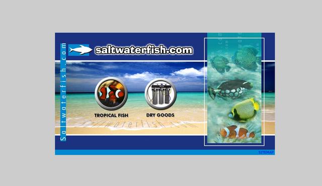 File:Saltwaterfish 6-14-06.png