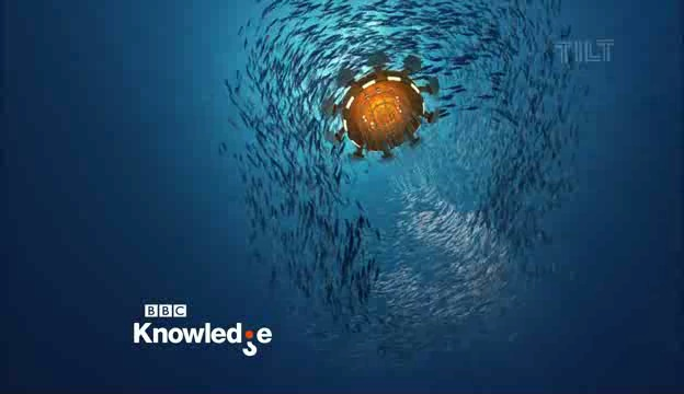 File:BBC Knowledge ident 2011 e.jpg
