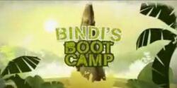 Bindi's Bootcamp