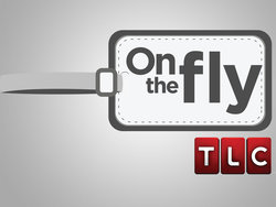 On the Fly logo