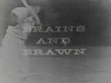 --File-Brains and Brawn logo.jpg-center-300px--