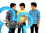 DisneyJonasBrothers2009