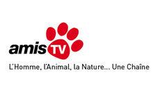 AMIS TV