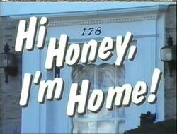 Hi Honey I'm Honey '91 pilot