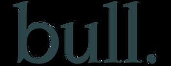 Bull-2016-tv-logo