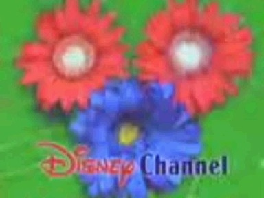 File:DisneyFlowers1997.jpg