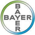 Bayer2010