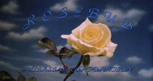 Rosebud Releasing Corporation