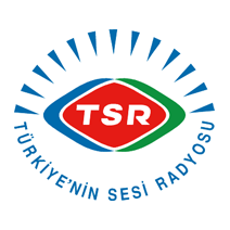 Voice of Turkey Logo