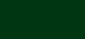 File:Pååls logo 2001.png