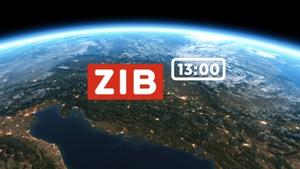 ZIB 13-00