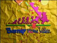 Barney hv2