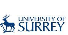 Surrey logo blue - klein2 1