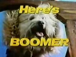 Here's Boomer title card