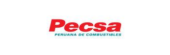 Pecsa-2002