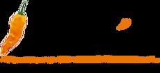 Newfusion logo