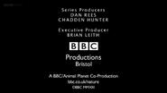 BBC Wild Arabia End Board 2013
