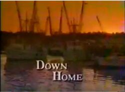 Down home-show