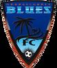 Orange County Blues FC logo