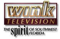 WINK-TV Logo 1995