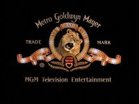MGM Television Entertainment 2001