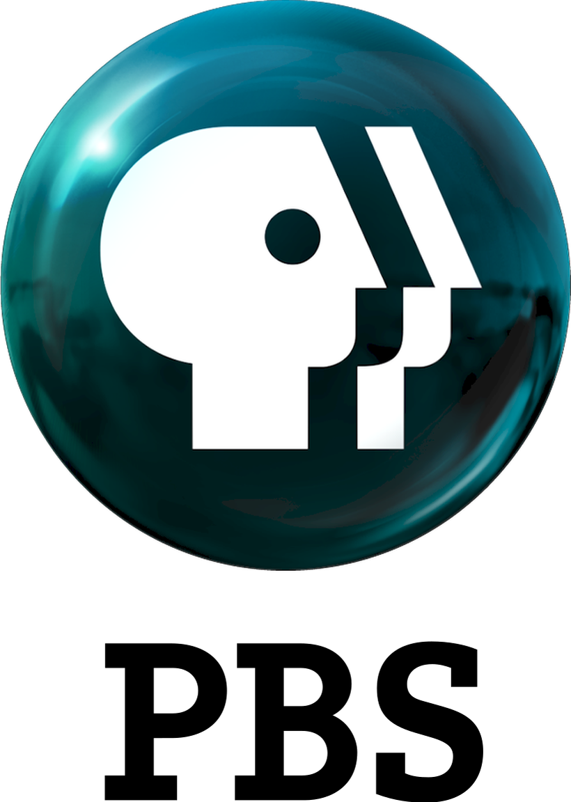 Image result for pbs logo