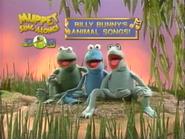 MSA Billy Bunny's Animal Songs trailer
