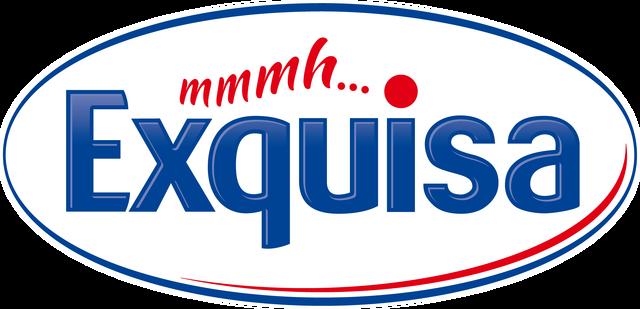 File:Exquisa logo.png