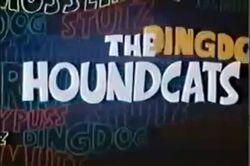 Houndcats 1