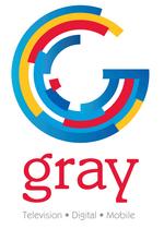 Gray Television 2013
