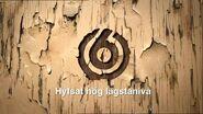 TV6 wood ident