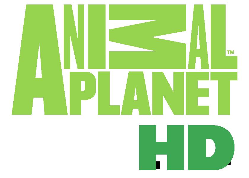 Resultado de imagem para animal planet hd