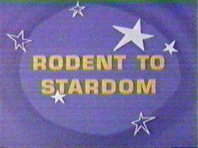 Rodenttostardom