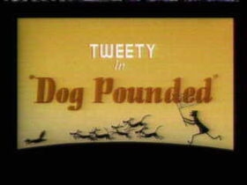Dogpnded