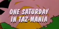 One Saturday in Taz-Mania