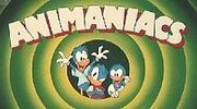 Animaniacs early design