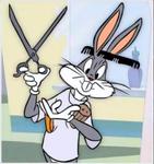5 - Hare-stylist
