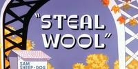 Steal Wool