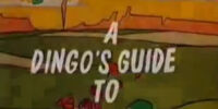 A Dingo's Guide to Magic
